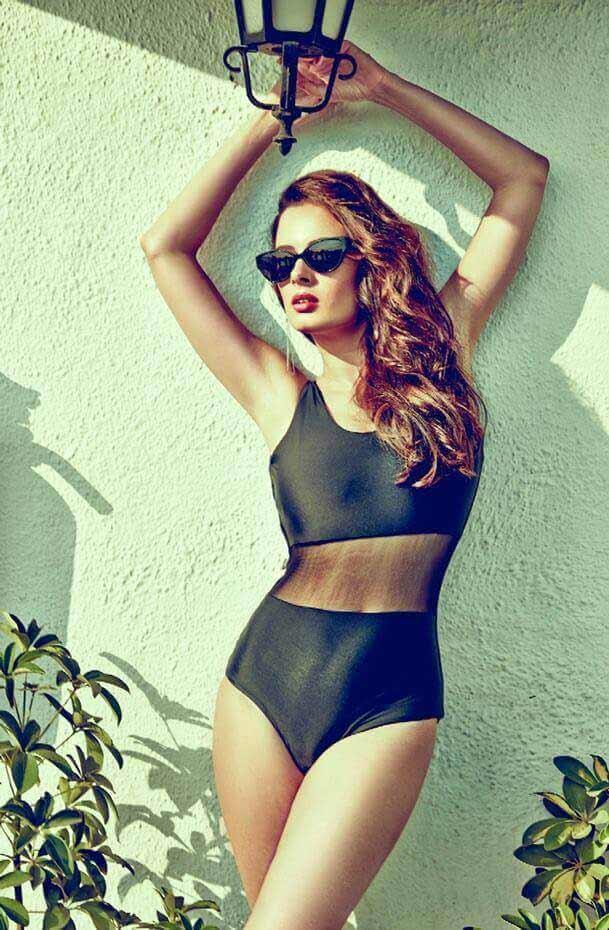 evelyn sharma bikini pictures