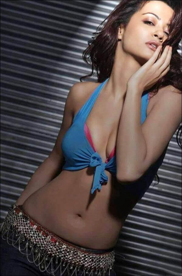 hot cleavage show of surveen chawla wearing bikini