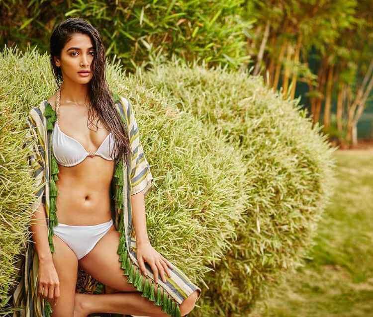 pooja hegde hot curves shown in bikini photoshoot