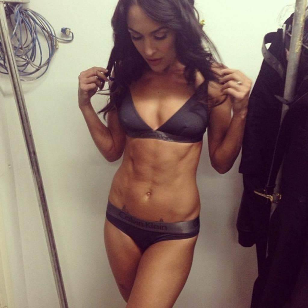 brie-bella-bikini-pictures-shows-off-body-assets