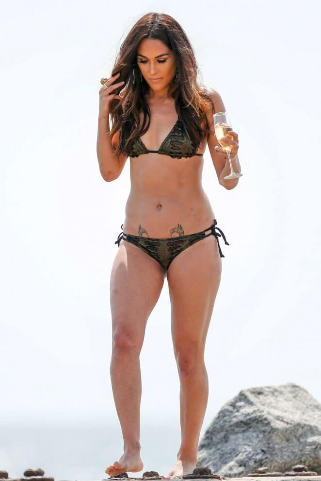 brie-bella-black-bikini-display-her-hot-body
