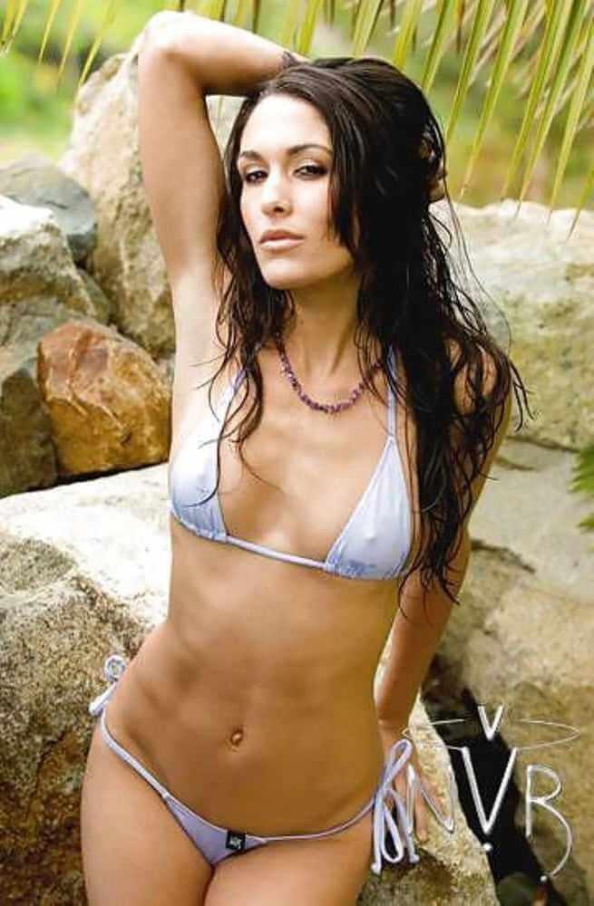 wwe-star-brie-bella-hot-bikini-pics