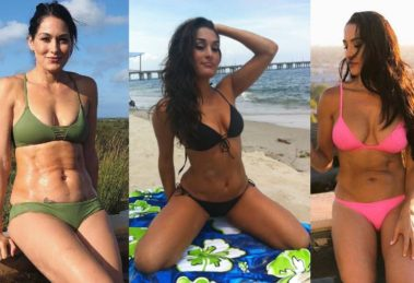 brie-bella-bikini-photos-collection