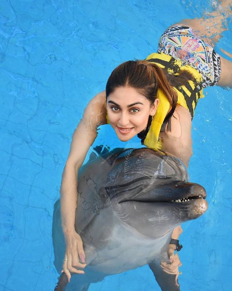 actress-krystle-dsouza-bikini-images-with-dolphin