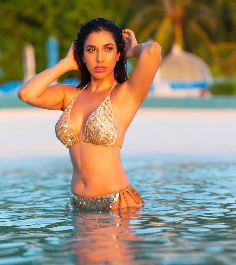 sexy-and-hot-actress-sophie-chaudhary-wet-bikini-photoshoot