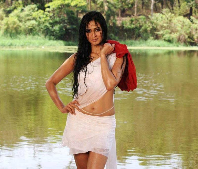 Shweta-Tiwari-hot-toned-body-shown-in-sexy-outfit